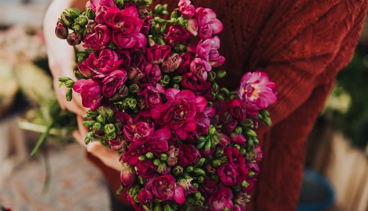 What kind of flowers can you order online for your loved ones?